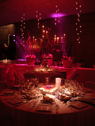 party-1322605